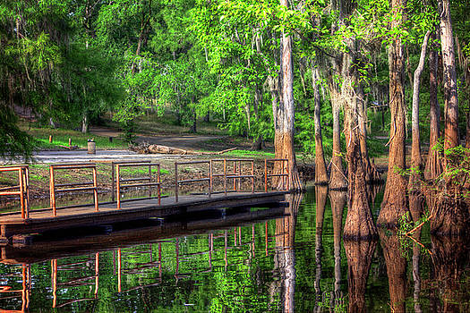 Cheniere Lake Bayou Dock by Ester Rogers
