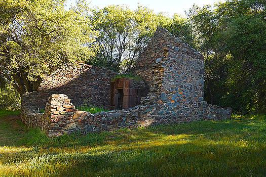 Frank Wilson - Cherokee Gold Assayers Office Ruins