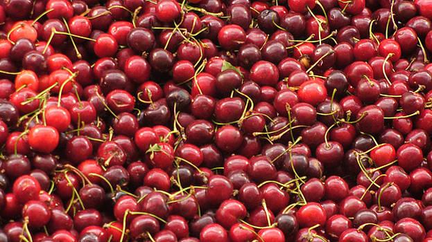 Cherries by Joyce Goldin