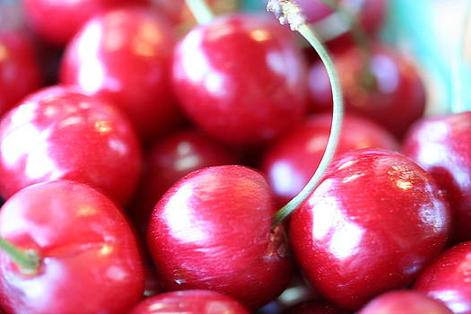 Cherries by Shelly Davis