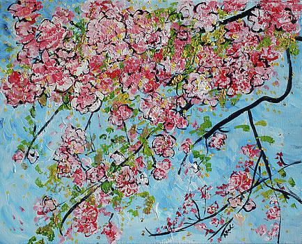 Cherry Blossoms 201738 by Alyse Radenovic