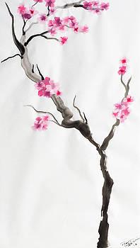 Cherry Blossom 3 by Dean Italiano