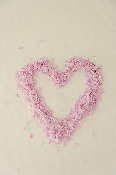 Cherry Blossom Heart by David Ridley
