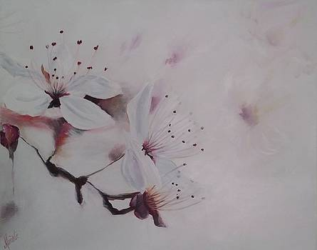 Cherry Blossom Time by Shirley Lennon