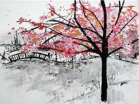 Cherry Blossoms and Bridge Meadowlark Botanical Gardens 201728 by Alyse Radenovic