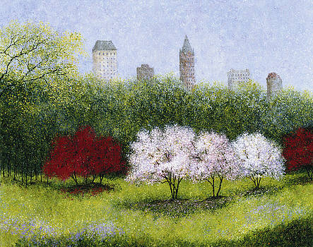 Cherry Blossoms Central Park by Patrick Antonelle