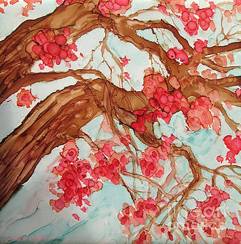 Cherry Blossoms.  by Jeanette Skeem
