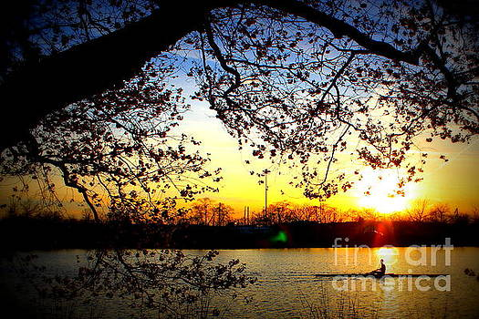 Cherry Blossoms On The Charles by Hanni Stoklosa