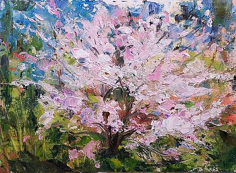 Cherry Bomb by Ann Bailey