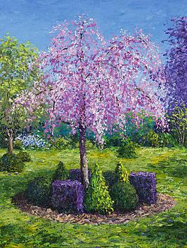 Cherry Tree by Joe Mckinney