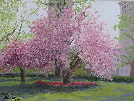 Cherry Tree Madison Square Park by Gary Conger