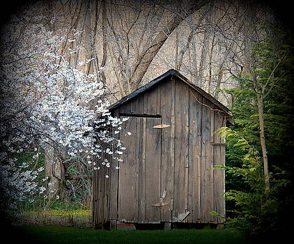 Cherry Tree Shed by Joyce Kimble Smith