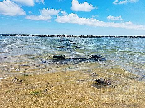 Chesapeake Bay by Angela Weis