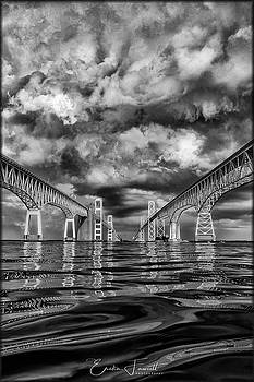 Erika Fawcett - Chesapeake Bay BW