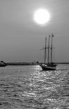Chesapeake Bay  by Samir Chokshi