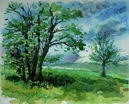 Cheslen Hillside by Michael Stancato