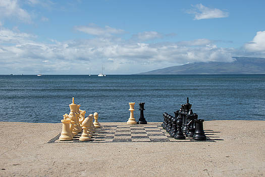 Chess With A View by Matt McDonald