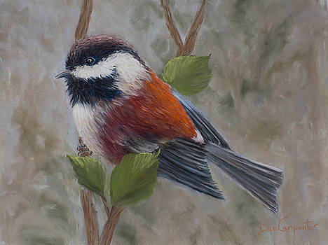 Dee Carpenter - Chestnut Backed Chickadee