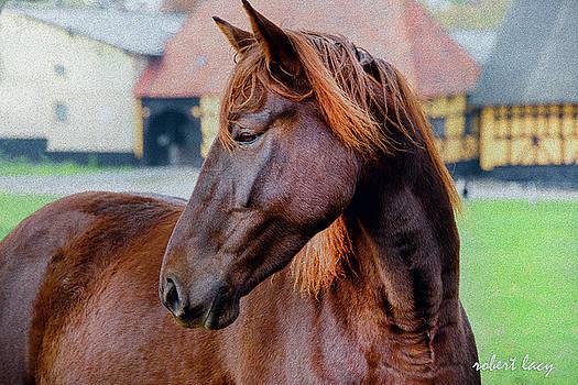 Robert Lacy - Chestnut Beauty