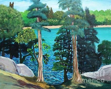 Chestnut Hill Reservoir by Romani Berlekov