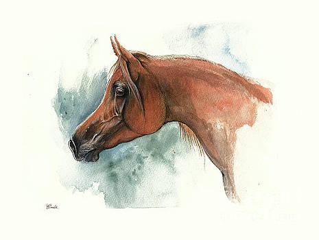 Angel Tarantella - chestnut arabian horse portrait 2016 09 08