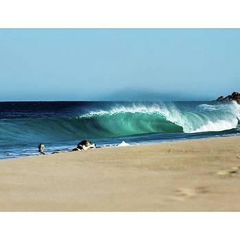 #chev #dogsofinstagram #wave #surf by Mik Rowlands