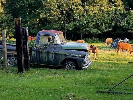 Chevy Apache Truck by Otis L Stanley