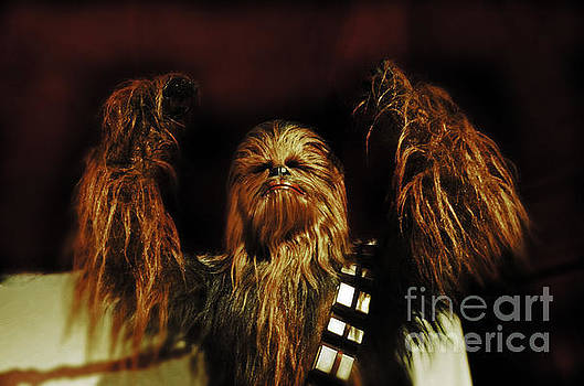 Chewie by Frank Larkin