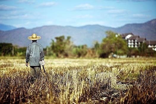 Chiang Mai Farmer, Thailand by David Joshua Ford