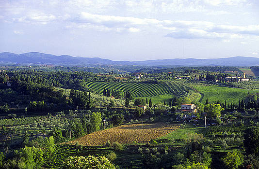 Gregory Ochocki and Photo Researchers - Chianti Region in Italy