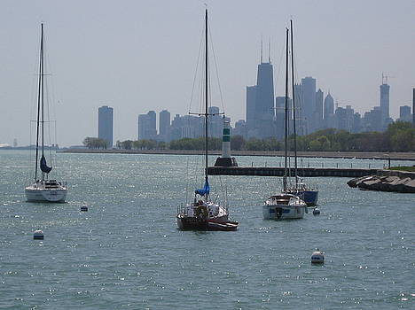 Chicago Montrose Harbor by Renee Antos
