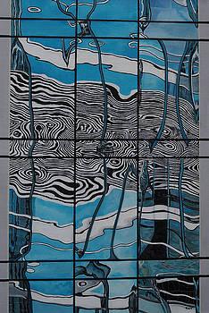 Chicago Reflection by Steven Fleit