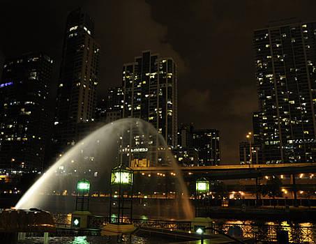 Chicago River Twilight by Jennifer Ferrier
