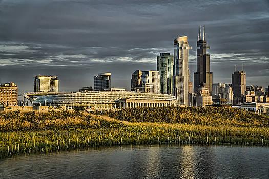 Chicago SKyline and nature preserve at sunrise by Sven Brogren