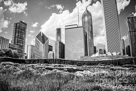 Chicago Skyline at Lurie Garden Black and White Photo by Paul Velgos