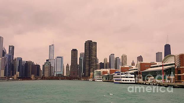 Chicago Skyline by Elizabeth Coats