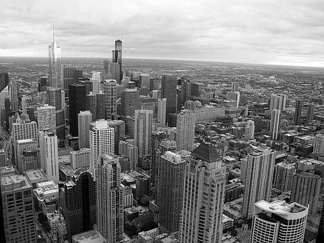 Chicago Skyline by Judy C Moses