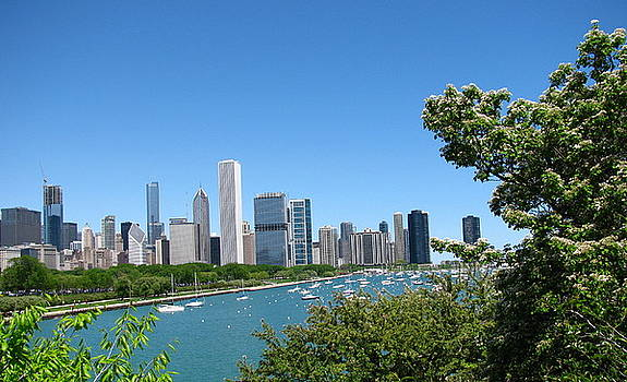 Tammy Bullard - Chicago Skyline