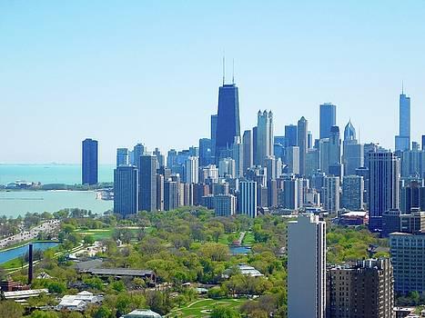 Chicago Skyline by Tephra Miriam