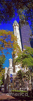 Chicago water tower and John Hancock Building 3020200322 by Tom Jelen