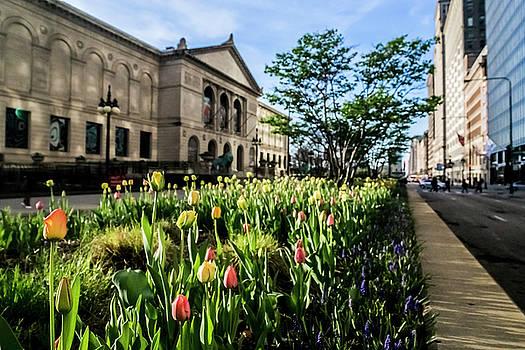 Chicago's Art Institute one early spring morning by Sven Brogren