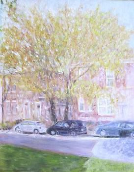 Chicago's Autumn glory by Glenda Crigger