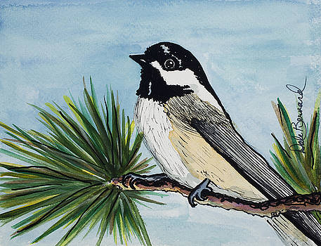 Chickadee by Dale Bernard