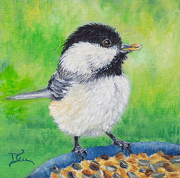 Dee Carpenter - Chickadee Lunch