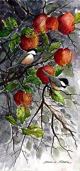 Chickadees In Apples by Steven W Schultz