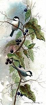 Chickadees In Grape Vine by Steven W Schultz