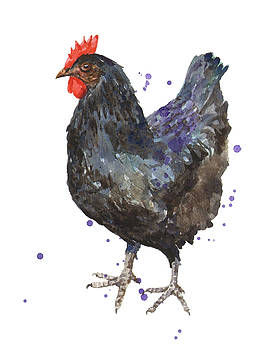 Chicken Painting by Alison Fennell