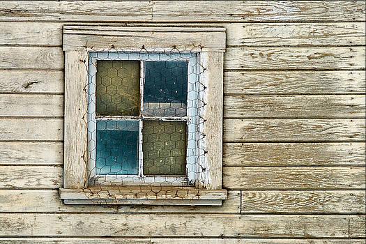 Chicken Wire Window by Paul DeRocker