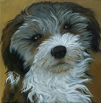 Chico - dog portrait oil painting by Linda Apple