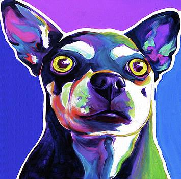 Chihuahua #002 by Nixo by Nicholas Nixo